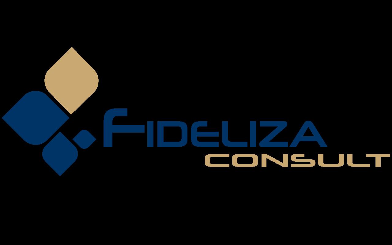 FIDELIZA CONSULT